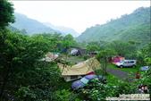 新竹尖石油羅溪森林:DSC08091.JPG