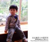 2012.11.12 台北貓空小木屋茶坊:DSC_3185.JPG