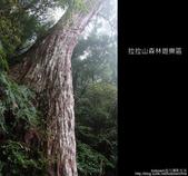 [ 北橫 ] 桃園復興鄉拉拉山森林遊樂區:DSCF7775.JPG