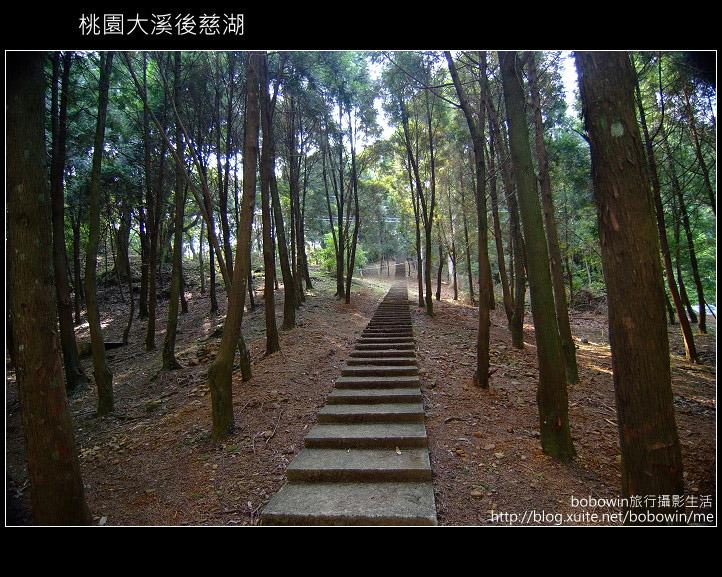 [ 北橫 ] 桃園大溪後慈湖:DSCF5227.JPG