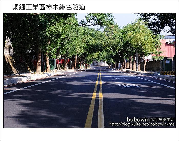 2011.10.23 銅鑼工業區樟木綠色隧道:DSC_9097.JPG