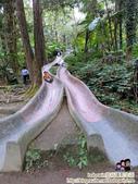 南投鳳凰谷鳥園生態園區:CIMG0280.JPG