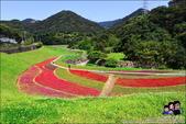 台北內湖大溝溪公園:DSC_2155.JPG