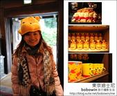 日本東京之旅 Day2 part1 東京迪士尼:DSC_8561.JPG
