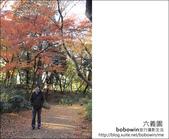 日本東京之旅 Day4 part6 六義園:DSC_0856.JPG