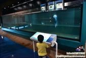 基隆海生館~適合大朋友的博物館:DSC_2169.JPG