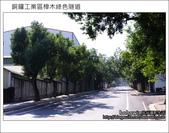 2011.10.23 銅鑼工業區樟木綠色隧道:DSC_9108.JPG