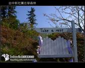 [ 台中 ] 新社薰衣草森林--薰衣草節:DSCF6634.JPG