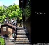 2009.07.04 三峽花岩山林:DSCF5852.JPG