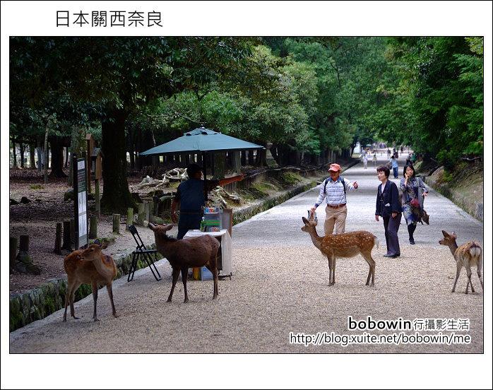 日本關西京都之旅Day5 part1 東福寺 奈良公園 春日大社:DSCF9588.JPG
