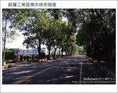 2011.10.23 銅鑼工業區樟木綠色隧道:DSC_9109.JPG