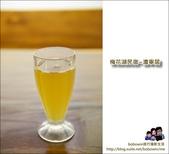 梅花湖民宿 澹寧居:DSC_8872.JPG