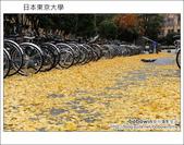 [ 日本東京自由行 ] Day4 part3 東京大學:DSC_0524.JPG