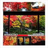 京都:京都_small.jpg