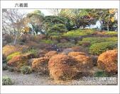 日本東京之旅 Day4 part6 六義園:DSC_0875.JPG