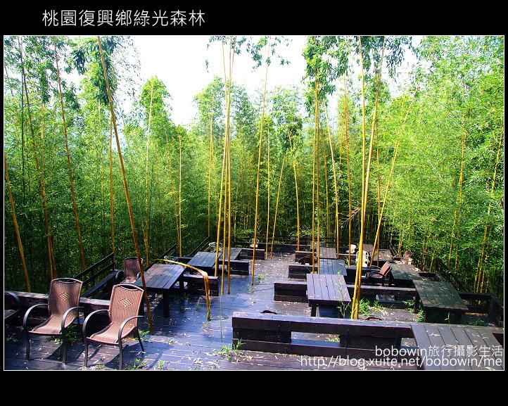 2009.08.15 綠光森林:DSCF6577.JPG