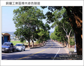 2011.10.23 銅鑼工業區樟木綠色隧道:DSC_9110.JPG