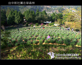 [ 台中 ] 新社薰衣草森林--薰衣草節:DSCF6620.JPG