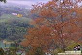 老官道休閒農場露營區:DSC_1158.JPG