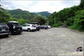 新竹尖石油羅溪森林:DSC07711.JPG