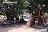 新竹陽光國小溜滑梯:DSC_0751.JPG