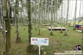 迦南美地露營區:DSC02998.JPG