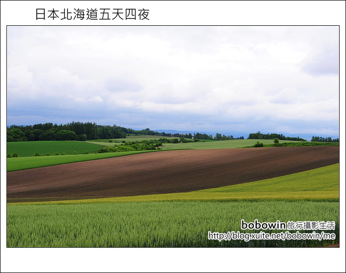 [ 日本北海道之旅 ] Day2 part3  美瑛之丘、拼布之丘:DSC_8366.JPG