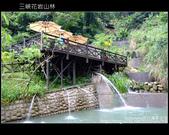 2009.07.04 三峽花岩山林:DSCF5909.JPG