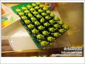 台北花博公園樂高餐廳:DSC05801.JPG