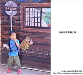 龍貓公車冰淇淋:DSC_0645.JPG