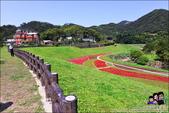 台北內湖大溝溪公園:DSC_2146.JPG
