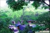 新竹尖石油羅溪森林:DSC08130.JPG