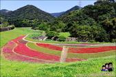 台北內湖大溝溪公園:DSC_2187.JPG