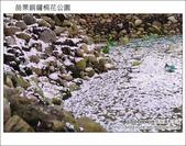 2012.04.29 苗栗桐花公園花況:DSC_1785.JPG