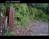 [ 北橫 ] 桃園復興鄉拉拉山森林遊樂區:DSCF7920.JPG