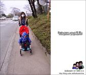 Babyzen yoyo推車:DSC_5663.JPG