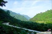 新竹尖石油羅溪森林:DSC08136.JPG