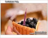 日本東京SKYTREE:DSC_4702.JPG
