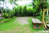 新竹尖石油羅溪森林:DSC08214.JPG