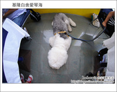 2011.09.03 基隆白舍愛琴海:DSC_2257.JPG