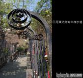 南投日月潭文武廟&年梯步道:DSCF8578.JPG
