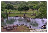 逗留Stay農場:DSC_6828.JPG