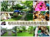 新竹尖石油羅溪森林:page.jpg