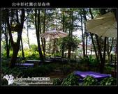 [ 台中 ] 新社薰衣草森林--薰衣草節:DSCF6498.JPG