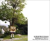 2013.03.17 桃園龍潭6028咖啡:DSC_3647.JPG