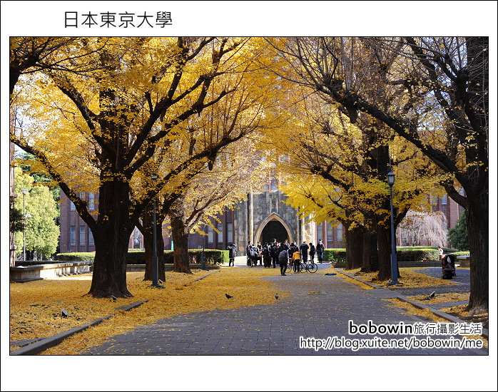 [ 日本東京自由行 ] Day4 part3 東京大學:DSC_0569.JPG