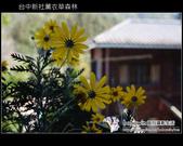[ 台中 ] 新社薰衣草森林--薰衣草節:DSCF6451.JPG