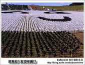 2014.01.11 基隆超大風車版圓仔-擁恆文創園區:DSC_8733.JPG