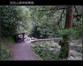 [ 北橫 ] 桃園復興鄉拉拉山森林遊樂區:DSCF7921.JPG