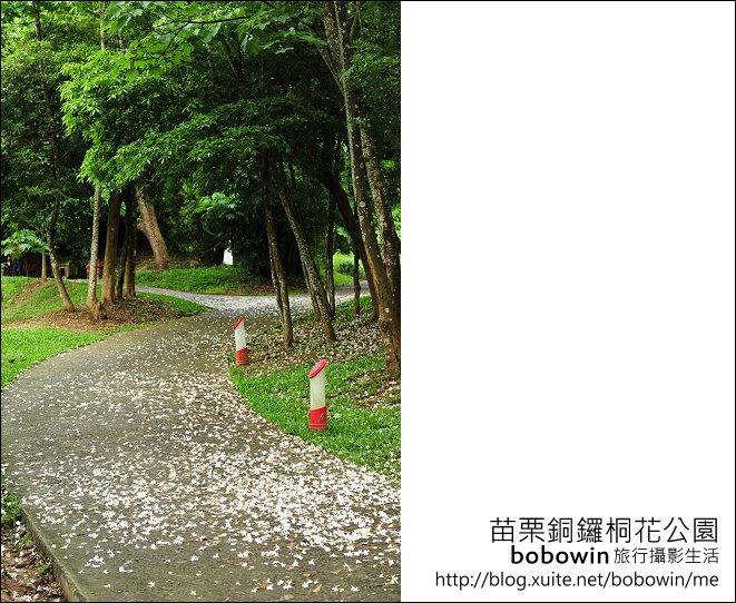 2012.04.29 苗栗桐花公園花況:DSC_1767.JPG